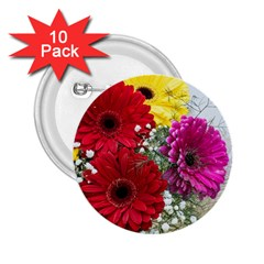 Flowers Gerbera Floral Spring 2 25  Buttons (10 Pack)