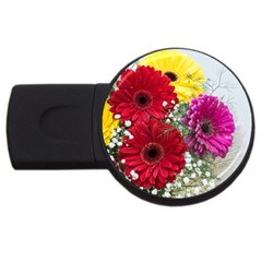 Flowers Gerbera Floral Spring Usb Flash Drive Round (2 Gb)