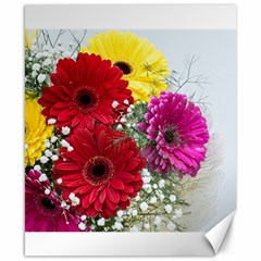 Flowers Gerbera Floral Spring Canvas 8  X 10