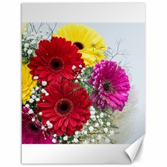 Flowers Gerbera Floral Spring Canvas 12  X 16