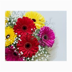 Flowers Gerbera Floral Spring Small Glasses Cloth (2 Side)