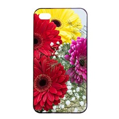 Flowers Gerbera Floral Spring Apple Iphone 4/4s Seamless Case (black)