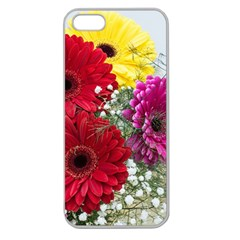 Flowers Gerbera Floral Spring Apple Seamless Iphone 5 Case (clear)