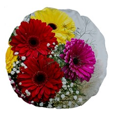 Flowers Gerbera Floral Spring Large 18  Premium Flano Round Cushions