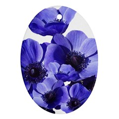 Poppy Blossom Bloom Summer Ornament (Oval)
