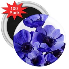 Poppy Blossom Bloom Summer 3  Magnets (100 Pack)
