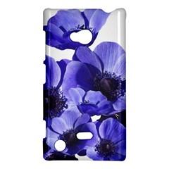 Poppy Blossom Bloom Summer Nokia Lumia 720