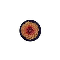 Art Beautiful Bloom Blossom Bright 1  Mini Magnets