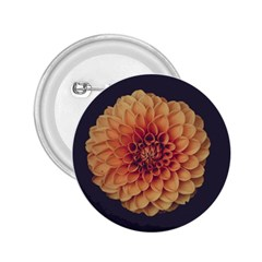 Art Beautiful Bloom Blossom Bright 2.25  Buttons