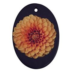 Art Beautiful Bloom Blossom Bright Ornament (oval)