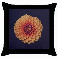Art Beautiful Bloom Blossom Bright Throw Pillow Case (black)