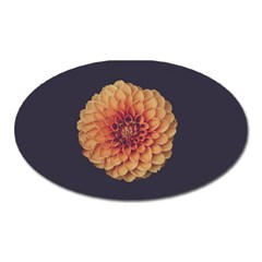 Art Beautiful Bloom Blossom Bright Oval Magnet
