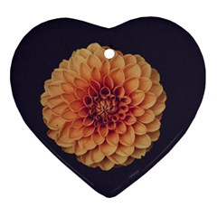 Art Beautiful Bloom Blossom Bright Heart Ornament (two Sides)