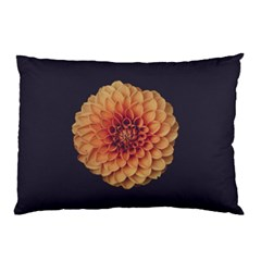 Art Beautiful Bloom Blossom Bright Pillow Case