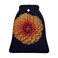 Art Beautiful Bloom Blossom Bright Bell Ornament (two Sides)