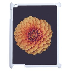 Art Beautiful Bloom Blossom Bright Apple Ipad 2 Case (white)