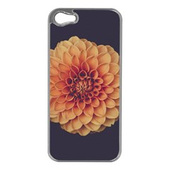 Art Beautiful Bloom Blossom Bright Apple Iphone 5 Case (silver)