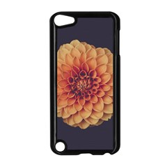 Art Beautiful Bloom Blossom Bright Apple Ipod Touch 5 Case (black)