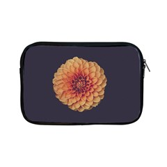 Art Beautiful Bloom Blossom Bright Apple iPad Mini Zipper Cases