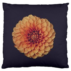 Art Beautiful Bloom Blossom Bright Large Flano Cushion Case (one Side)