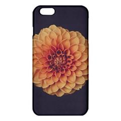 Art Beautiful Bloom Blossom Bright iPhone 6 Plus/6S Plus TPU Case
