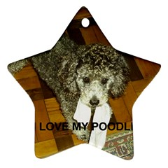 Poodle Love W Pic Silver Star Ornament (Two Sides)