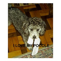 Poodle Love W Pic Silver Shower Curtain 60  x 72  (Medium)