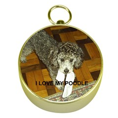 Poodle Love W Pic Silver Gold Compasses