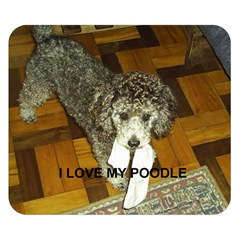 Poodle Love W Pic Silver Double Sided Flano Blanket (Small)