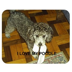 Poodle Love W Pic Silver Double Sided Flano Blanket (Medium)