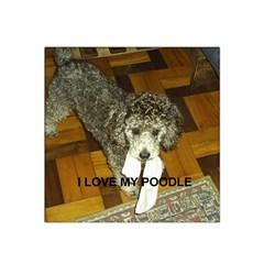 Poodle Love W Pic Silver Satin Bandana Scarf