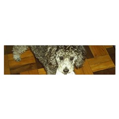 Poodle Love W Pic Silver Satin Scarf (Oblong)