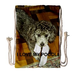 Poodle Love W Pic Silver Drawstring Bag (Large)