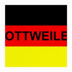 Rottweiler Name On Flag Medium Glasses Cloth