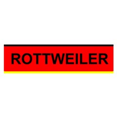 Rottweiler Name On Flag Satin Scarf (Oblong)