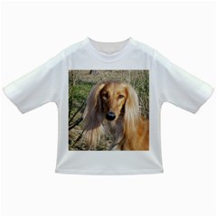 Saluki Infant/Toddler T-Shirts