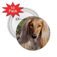 Saluki 2.25  Buttons (10 pack)