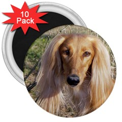 Saluki 3  Magnets (10 pack)