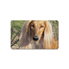 Saluki Magnet (Name Card)