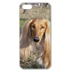 Saluki Apple Seamless iPhone 5 Case (Clear)