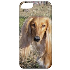 Saluki Apple iPhone 5 Classic Hardshell Case