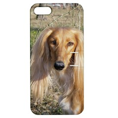 Saluki Apple iPhone 5 Hardshell Case with Stand
