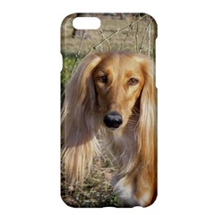 Saluki Apple iPhone 6 Plus/6S Plus Hardshell Case