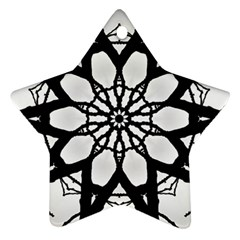 Pattern Abstract Fractal Star Ornament (two Sides)