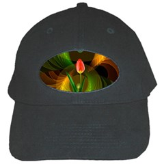 Tulip Flower Background Nebulous Black Cap