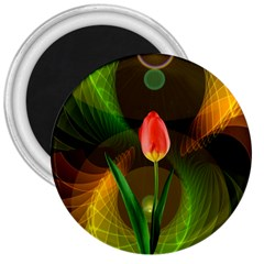 Tulip Flower Background Nebulous 3  Magnets