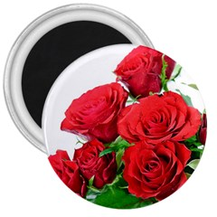 A Bouquet Of Roses On A White Background 3  Magnets