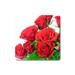 A Bouquet Of Roses On A White Background Square Magnet