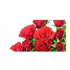A Bouquet Of Roses On A White Background Satin Wrap