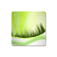 Green Background Wallpaper Texture Square Magnet